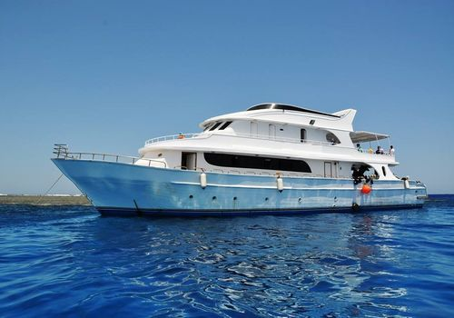 Boat Tours and Yacht Charters