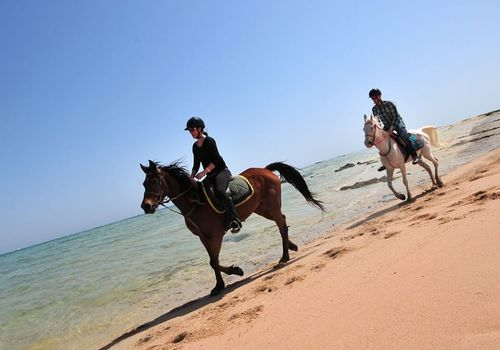 Horse Riding and Camel Trekking