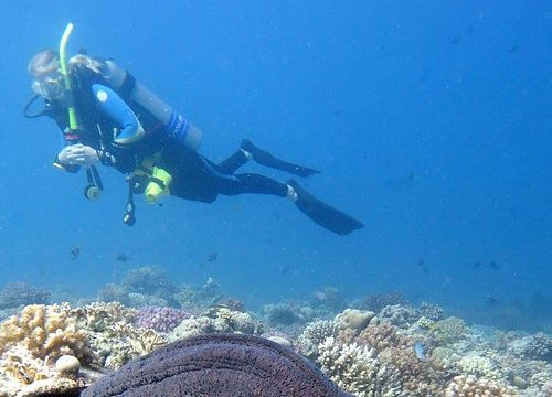 PADI Open Water Diver Course from Soma Bay