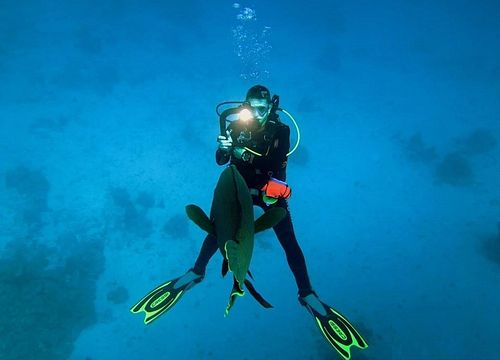 PADI Open Water Diver Course from Sahl Hasheesh