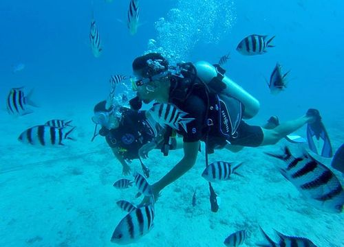 PADI Open Water Diver Course from Safaga